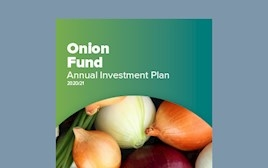 Annual Investment Plan