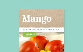 Strategic Investment Plan